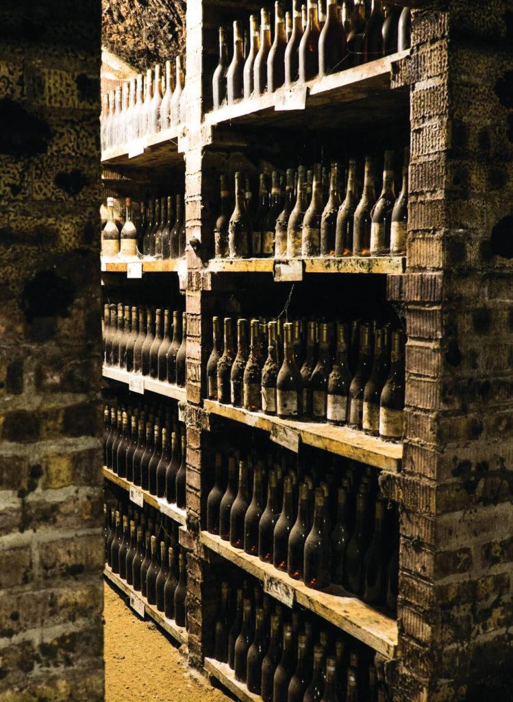 Cellars of the Tokaj Trading House